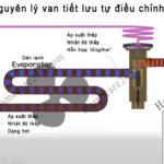 Sử dụng ống mao và van tiết lưu như thế nào, giống và khác nhau