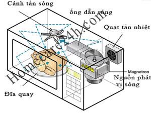 Cấu tạo lò vi sóng, những thông tin người sử dụng cần biết về lò vi sóng