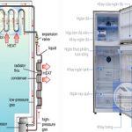 Cấu tạo của tủ lạnh, các bộ phận chính và chức năng từng bộ phận