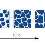 Kích thước tinh thể nước đá lớn hay nhỏ phụ thuộc yếu tố