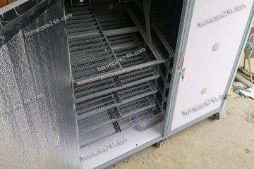 Hướng dẫn sử dụng máy ấp trứng khi nắng nóng cao điểm