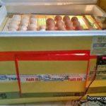 Máy ấp trứng thùng xốp